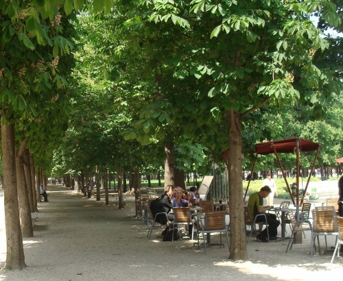 Paris - Tuleries under the trees