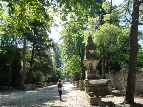Arles - Alyscamps Walk